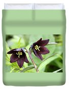 Chocolate Lilly Duvet Cover