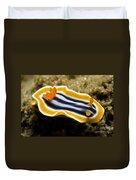 Chromodoris Magnifica Nudibranch Duvet Cover