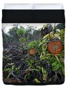 Clear Cut Red Mangrove Stand Duvet Cover