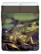 Close-up Of A Bullfrog Duvet Cover