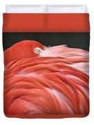 Close Up Of A Flamingo Resting Its Head Duvet Cover