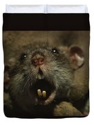 Close Up Of A Rats Fast-growing Teeth Duvet Cover