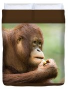 Close-up Of An Orangutan Pongo Pygmaeus Duvet Cover
