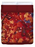 Close-up Of Autumn Leaves Duvet Cover
