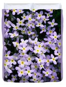 Close-up Of Bluet Flowers Houstonia Duvet Cover