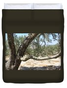 Close Up Olive Tree Duvet Cover