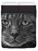 Close Up Portrait Of A Cat Duvet Cover
