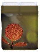 Close View Of A Leaf Duvet Cover