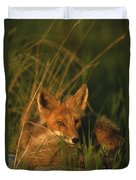 Close View Of A Red Fox At Rest Duvet Cover