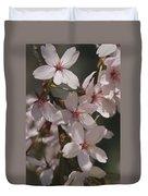 Close View Of Cherry Blossoms Duvet Cover