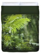 Close View Of Ferns In A Papua New Duvet Cover