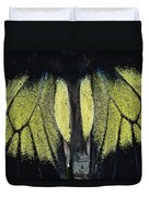 Close View Of Iridescent Moth Wings Duvet Cover