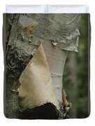 Close View Of Paper-birch Bark Duvet Cover