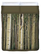 Close View Of Tree Trunks In A Stand Duvet Cover