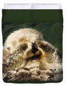 Closeup Of A Captive Sea Otter Covering Duvet Cover
