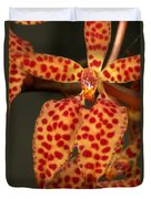 Closeup Of An Orchid, Renanthera Twin Duvet Cover