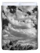 Clouds Rising Bw Palm Springs Duvet Cover