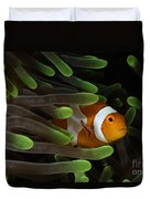 Clownfish In Green Anemone, Indonesia Duvet Cover