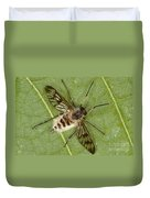 Cluster Fly Killed By Parasitic Fungus Duvet Cover