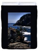Coastal Maine Duvet Cover by Skip Willits