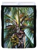 Coconut Palm Inflorescence Duvet Cover by Karon Melillo DeVega