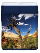 Cohab Canyon At Capitol Reef Duvet Cover
