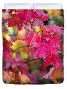 Color Duvet Cover