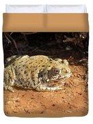 Colorado River Toad Duvet Cover