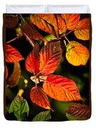 Colorful Blackberry Leaves 1 Duvet Cover