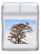 Colorful Cypress Duvet Cover