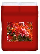Colorful Fall Tree Red Leaves Art Prints Duvet Cover