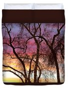 Colorful Silhouetted Trees 37 Duvet Cover