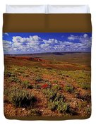 Colorful Valley From Fossil Lake Trailsil Bu Duvet Cover