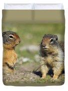 Columbian Ground Squirrels, Banff Duvet Cover