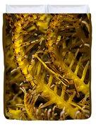 Commensal Shrimp Duvet Cover