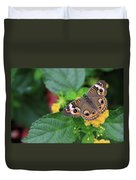 Common Buckeye II Duvet Cover