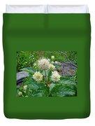 Common Buttonbush - Cephalanthus Occidentalis Duvet Cover