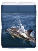 Common Dolphin Delphinus Delphis Duvet Cover