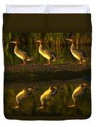 Common Mergansers On Rock Reflecting Duvet Cover