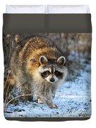 Common Raccoon Duvet Cover