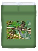 Common Whitetail Dragonfly - Plathemis Lydia - Male Duvet Cover
