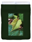 Concord Grape Plant Duvet Cover by Science Source