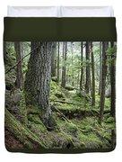 Coniferous Forest, Inside Passage Duvet Cover