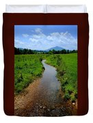 Cool Mountain Stream Duvet Cover by Frozen in Time Fine Art Photography