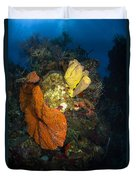 Coral And Sponge Reef, Belize Duvet Cover