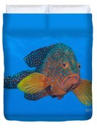 Coral Grouper, Kimbe Bay, Papua New Duvet Cover