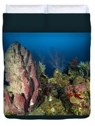 Coral Reef And Sponges, Belize Duvet Cover