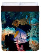 Coral Reef In Red Sea Duvet Cover