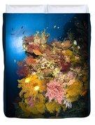 Coral Reef Seascape, Australia Duvet Cover