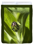 Cornflower Bud Duvet Cover